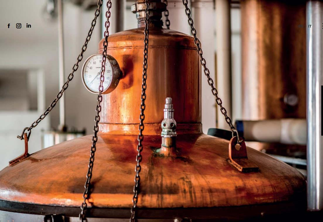 Una storia di famiglia: la distilleria Luxardo compie 200 anni
